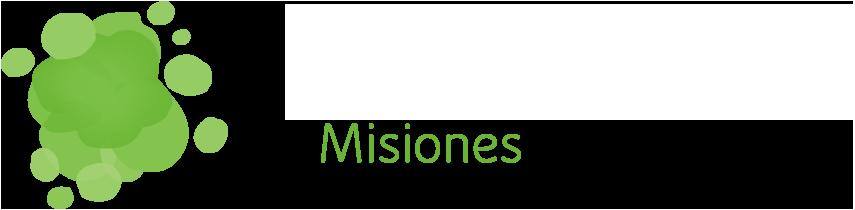 Misiones AEE